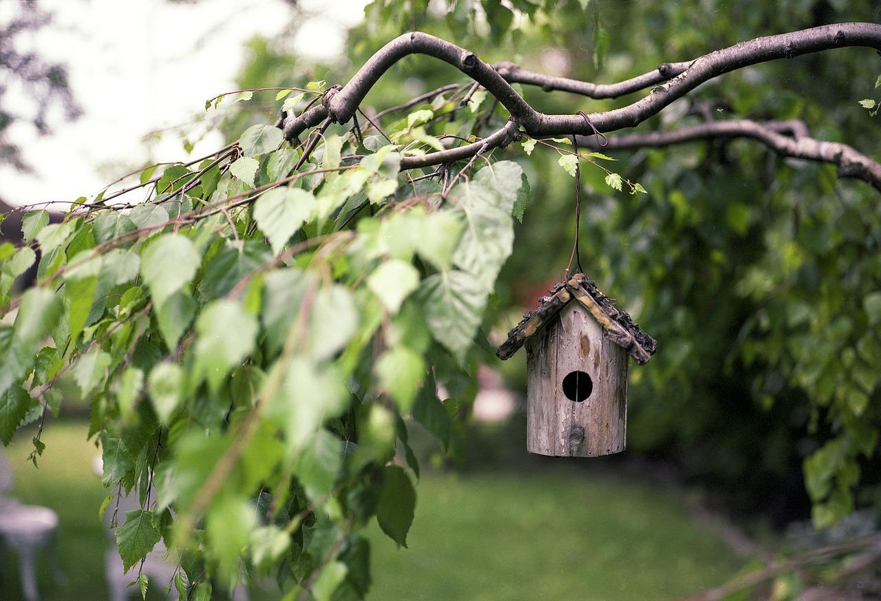 5 astuces bricolage pour aménager économiquement votre extérieur